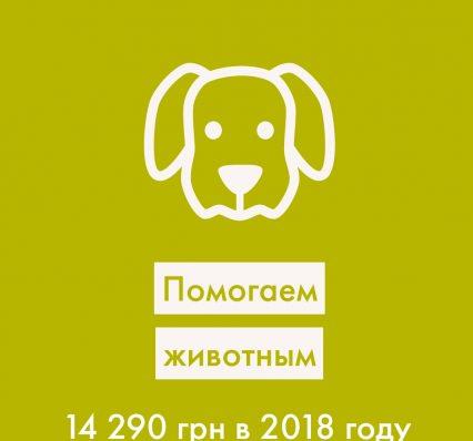 20190114_102815